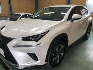 LEXUS NX 新車